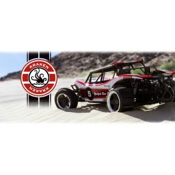 HPI RTR Baja 5B Sidewinder X5 Pre-Assembled 1/5th scale 2WD buggy