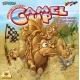 Kupranugarių lenktynės (CAMEL UP)