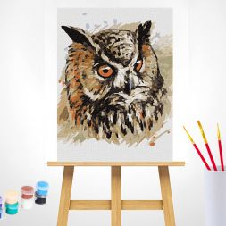 Tapypos rinkinys (30x40): Owl Face